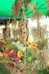 2012dozynki (33).jpg - miniatura z galerii zdjęć (otwórz zdjęcie w powiększonej wersji)